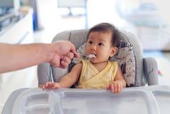 Father feeding porridge to his kid on baby feeding seat. stock photography