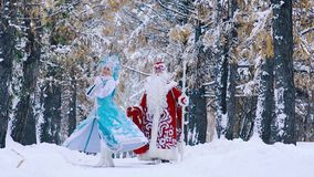 Father Frost and Snow Maiden in beautiful snowy forest walking together stock footage