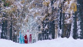 Father Frost and Snow Maiden going on a footpath in snowy forest. At the New Year Eve stock video footage