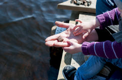 Father gives his son a small pebble for throwing into the river Royalty Free Stock Photos
