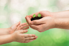 Father gives a little sprout to the baby, ecology concept. Tiny sprout of morning glory in man's hands. The man gives it to his baby. Earth day stock photography