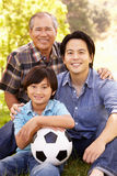 Father, grandfather and son portrait Royalty Free Stock Images