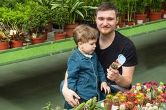 Father and her baby boy in a plant shop looking at cacti. Gardening In Greenhouse. Botanical garden, flower farming stock photos