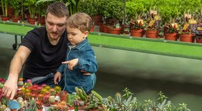 Father and her baby boy in a plant shop looking at cacti. Gardening In Greenhouse. Botanical garden, flower farming royalty free stock images