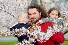 Father and his children in blooming cherry garden Royalty Free Stock Image