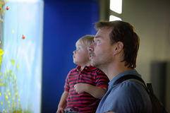 Father and his son enjoying views of underwater life Stock Images