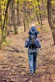 Father with his son on his shoulders walking in the autumn fores. T. Back view Stock Photography
