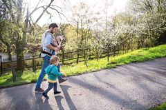 A father with his toddler children outside on a spring walk. A father with his two toddler children outside on a sunny spring walk. A baby girl in a carrier, a stock photography