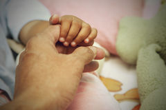 Father holding baby hand in vintage filtered style. Stock Photos
