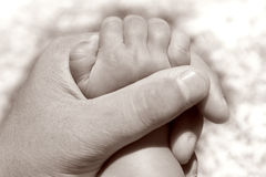 Father holding baby's hand Stock Images