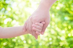 Father holding hand of little child. In park stock image