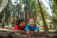 Father with infant son visit Sequoia national park in California, USA.  royalty free stock images