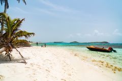 Father and kids at beach. Father and kids enjoying tropical beach vacation on exotic island at Tobago cays in St Vincent and the Grenadines stock photo