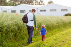 Father and little son boy walking through poppy field in summer Stock Photo