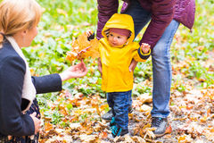 Father, mother and little son having fun in autumn park Stock Photography