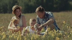Father and mother playing with their son in green summer meadow. Young father and mother playing with their son and his toys in green summer meadow. Slow motion stock video footage