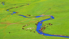 Father Mother prairie river Stock Photo