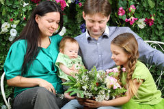 Father, mother, sister and baby look at bunch of flowers. On bench in garden near verdant hedge Royalty Free Stock Photography