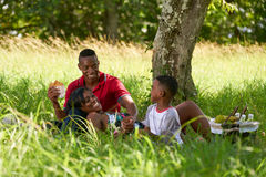 Father Mother Son Eating Food During Picnic On Summer Holidays. Happy black couple with son in city park. African american family with young man, women and child Stock Photo