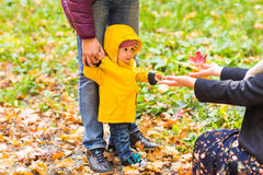 Father, mother and Son walking. Baby taking first steps with father help in autumn garden in the city Royalty Free Stock Photos