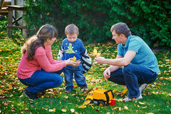 Father, mother and young son at a picnic in the park.  Stock Photos