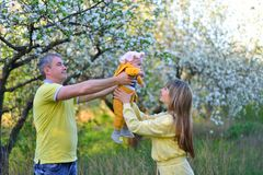 The father passes the daughter to her mother in a flowering garden royalty free stock photos