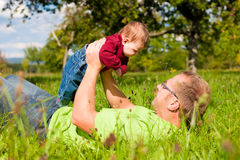 Father playing with baby on meadow Royalty Free Stock Photos