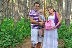 The father, pregnant mother and the child in the pine wood. Family with pregnant mother on a footpath in the pine wood Royalty Free Stock Images