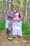 The father, pregnant mother and the child in the pine wood. Family with pregnant mother on a footpath in the pine wood Stock Images