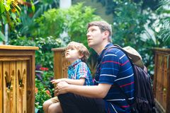 Father and preschool kid boy discovering flowers, plants and butterflies at botanic garden. Family, young man and son. Father and preschool kid boy discovering stock photos