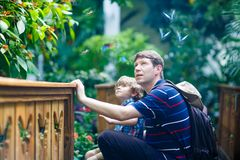 Father and preschool kid boy discovering flowers, plants and butterflies at botanic garden. Family, young men and son interested in biology. Active educational royalty free stock photography