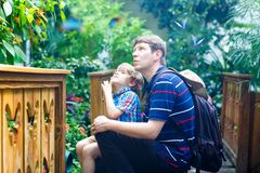 Father and preschool kid boy discovering flowers, plants and butterflies at botanic garden. Family, young man and son. Father and preschool kid boy discovering royalty free stock image