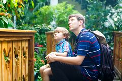 Father and preschool kid boy discovering flowers, plants and butterflies at botanic garden. Family, young man and son. Father and preschool kid boy discovering royalty free stock photography