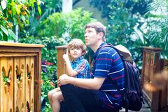 Father and preschool kid boy discovering flowers, plants and butterflies at botanic garden. Family, young man and son interested in biology. Active educational royalty free stock image