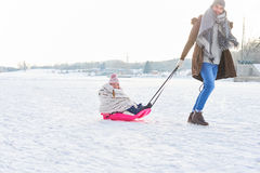 Father pulls child with sled. In winter on the snow Royalty Free Stock Images