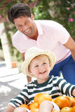 Father Pushing Son In Wheelbarrow Royalty Free Stock Photography