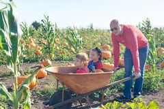 Father pushing wheelbarrow with daughters inside at farm field Stock Photography