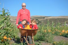 Father pushing wheelbarrow with daughters inside at farm field Stock Photo