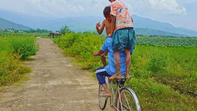 Father Rides Two Sons on Bicycle in Countryside stock video