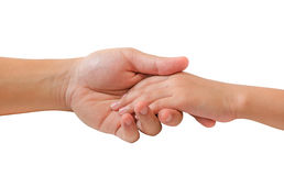 Father's and baby's hand. Isolated on white background royalty free stock photo