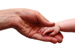 Father's and baby's hands. Isolated on white Stock Images
