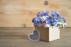 Father's Day card: Colorful spring  flowers Stock Images