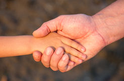 Father's hand lead his child son in summer forest nature Royalty Free Stock Photos