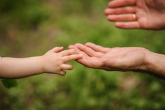 Father's hand lead his child son in summer forest nature outdoor,. Trust family concept stock photos