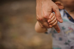 Father's hand lead his child son in summer forest nature outdoor,. Trust family concept stock photography