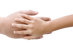 Father's hand under his child son hand. On white background royalty free stock images
