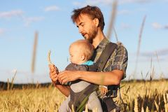 Father shows his son the ear of barley. Father shows his son infant baby in sling the ear of barley, Russia Stock Photos