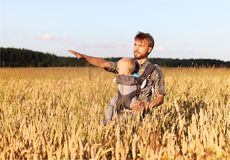 Father shows his son a field of barley. Father shows his son infant baby in sling a field of barley, Russia Royalty Free Stock Photo
