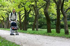 Father with son. In park Royalty Free Stock Photography