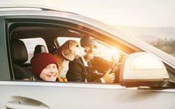 Father with son and beagle dog traveling together by auto right stock images